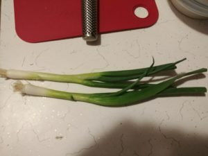 2 sprigs green onion